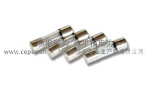ED0204-3型变压器直流电阻速测仪保险管